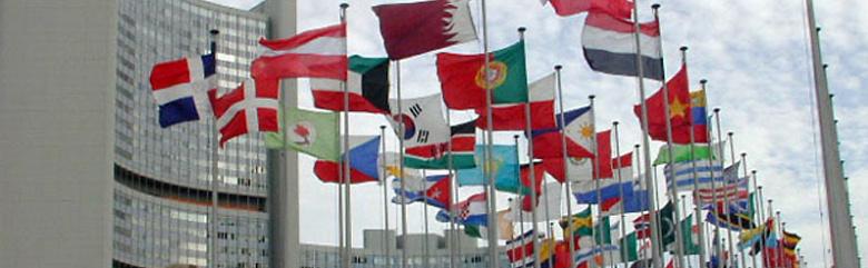IAEA Fahnen vergrössert
